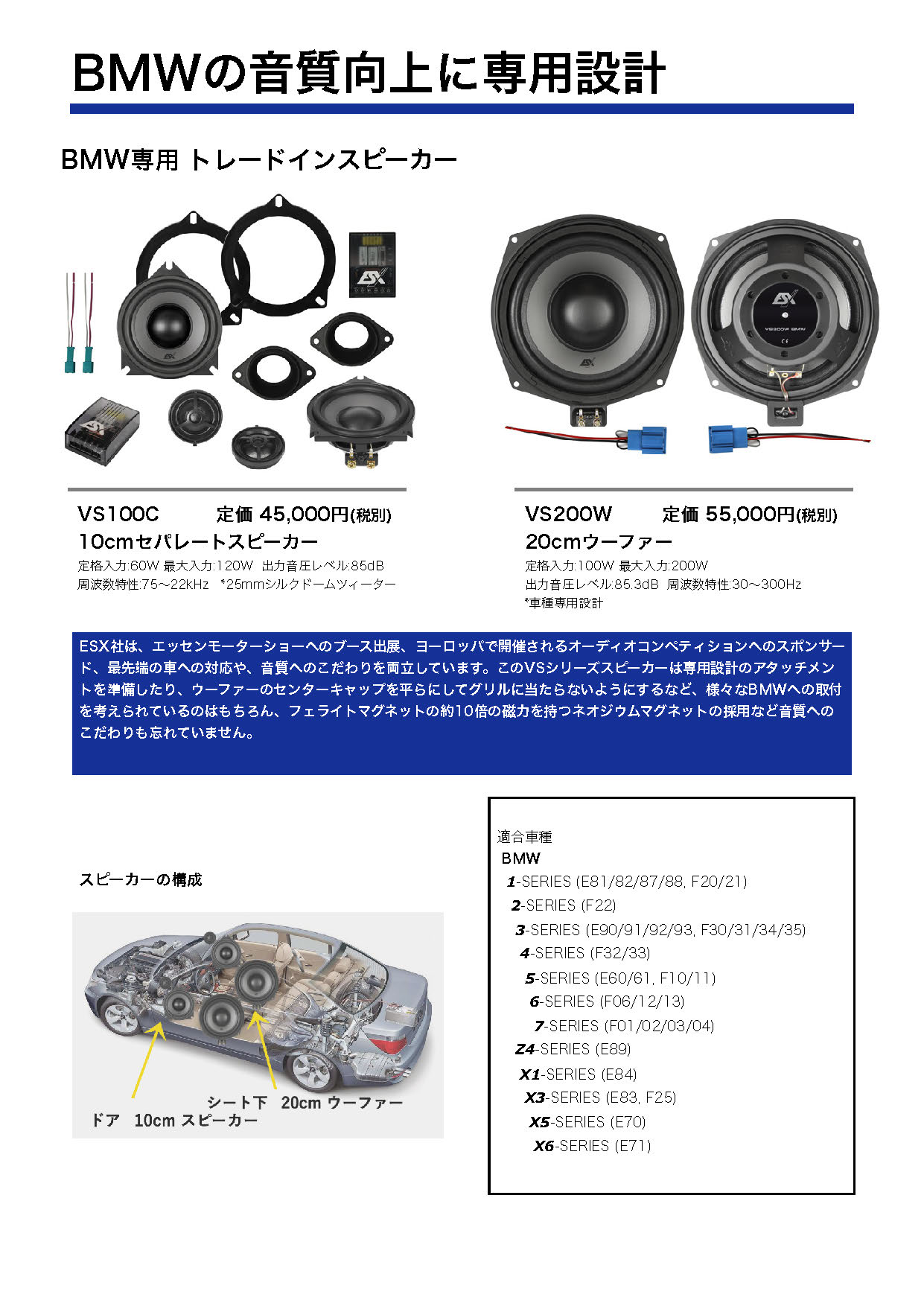 ESX Car Audio System