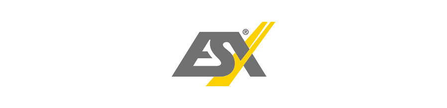 ESX Car Audio Systems